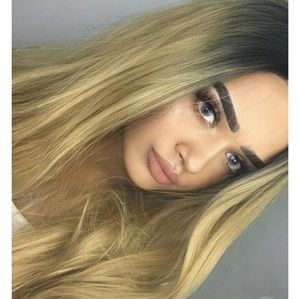 Ombre Blonde Beauty LaceFront Wig